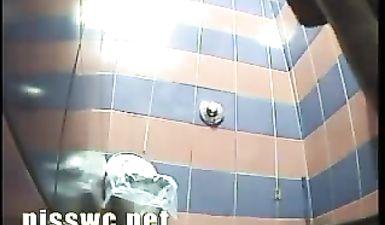 Копро видео из общественного туалета России