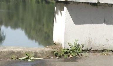 Высокая брюнетка в очках ссыт на берегу реки